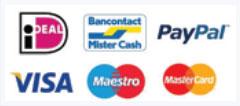 Ideal PayPal Visa Maestro